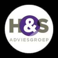 Schoenmaker Onze klanten H&S Adviesgroep